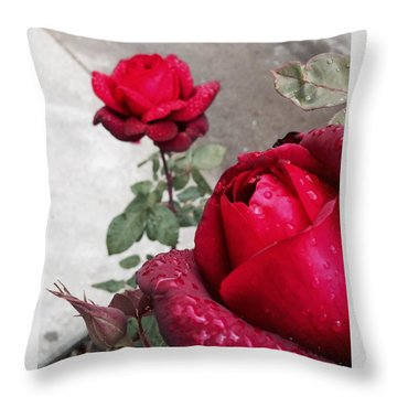 Red Roses Throw Pillow by Beverly Johnson