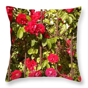 Red Roses In Summertime Throw Pillow by Arletta Cwalina