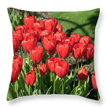 Red Royalty Throw Pillow