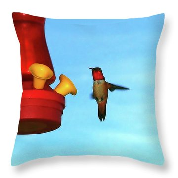 Throw Pillow featuring the photograph Red Ruby by Wendy McKennon
