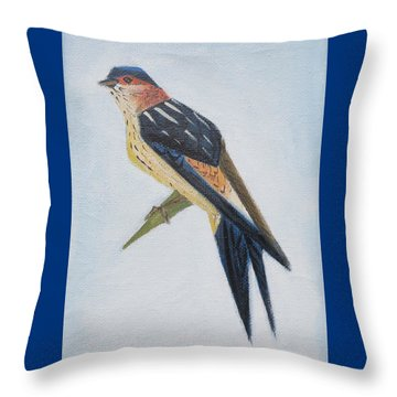 Red-rumped Swallow Throw Pillow