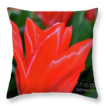 Red Satin Throw Pillow