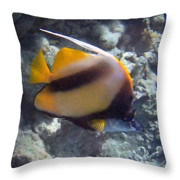 Red Sea Bannerfish 2 Throw Pillow