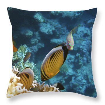 Red Sea Magical World Throw Pillow