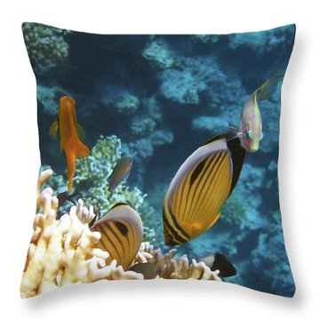 Throw Pillow featuring the photograph Red Sea Magical World by Johanna Hurmerinta
