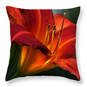 Red Seduction 2 Throw Pillow by John Poon
