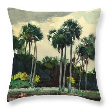 Red Shirt Homosassa Florida Throw Pillow