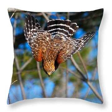 Throw Pillow featuring the photograph Red-shouldered Hawk  by Debbie Stahre