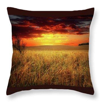 Red Skies Throw Pillow