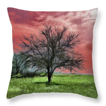 Red Sky Throw Pillow by Jeff Kolker