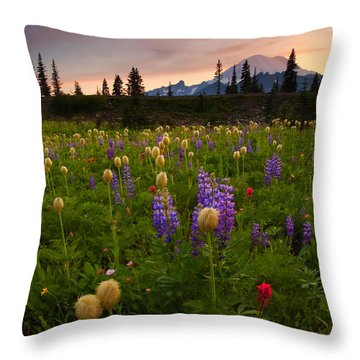 Red Sky Meadow Throw Pillow by Mike  Dawson