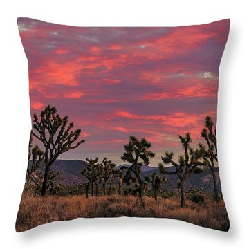Red Sky Over Joshua Tree Throw Pillow