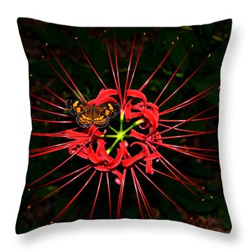 Red Spider Lily And Painted Lady Butterfly 001 Throw Pillow