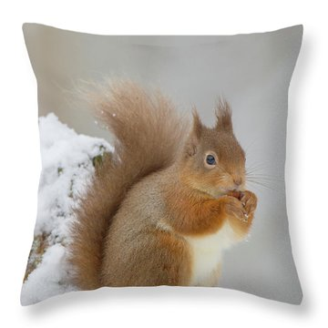 Red Squirrel In The Snow Side On Throw Pillow