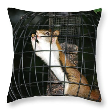 Red Squirrel Jail Throw Pillow