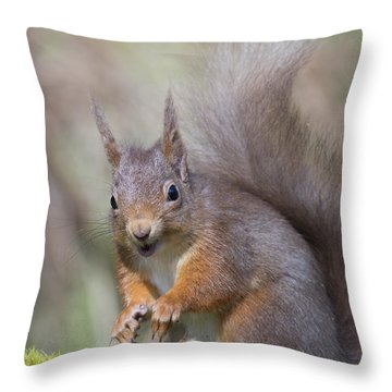 Red Squirrel - Scottish Highlands #26 Throw Pillow