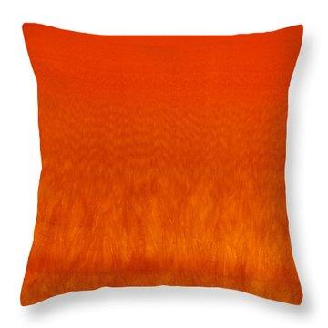 Red Stone 2 Throw Pillow