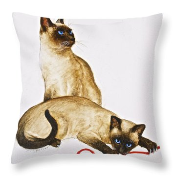 String Theroy  Throw Pillow