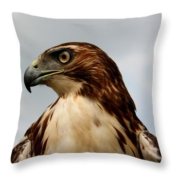 Red Tail Hawk 1 Throw Pillow by David Dunham