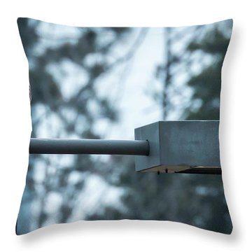 Throw Pillow featuring the photograph Red Tailed Hawk At Parkside by Ricky L Jones