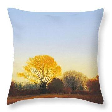 Red Tailed Hawk Sold Throw Pillow