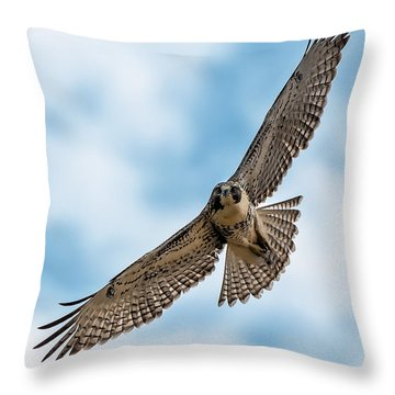 Red-tailed Hawk Coming At Me Throw Pillow