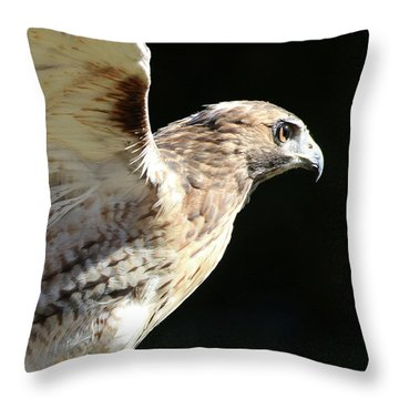 Throw Pillow featuring the photograph Red-tailed Hawk In Profile by William Selander