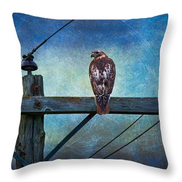 Red-tailed Hawk On Power Pole Throw Pillow