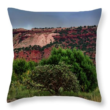 Throw Pillow featuring the photograph Red Terrain - New Mexico by Diana Mary Sharpton