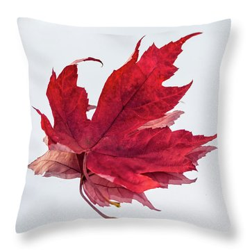 Red Threads Throw Pillow