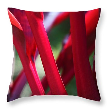 Throw Pillow featuring the photograph Red Ti  by Kerri Ligatich