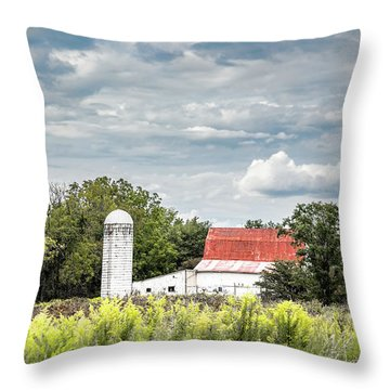 Red Tin Roof Throw Pillow
