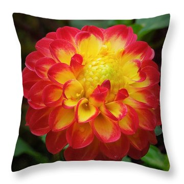Red Tipped Petals Throw Pillow