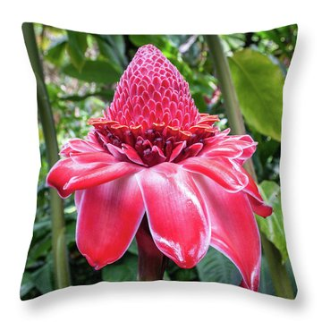 Red Torch Ginger Flower Throw Pillow