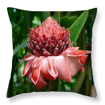 Red Torch Ginger Throw Pillow by Tropical Ties Dominica