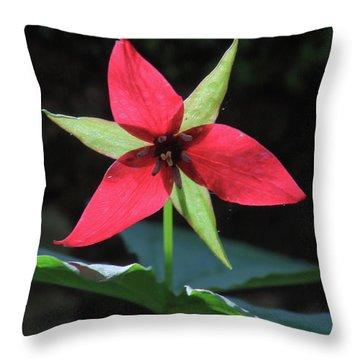 Red Trillium Wildflower Throw Pillow by John Burk