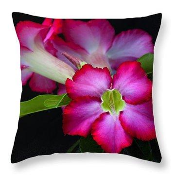 Throw Pillow featuring the photograph Red Tropical Flower by Ken Barrett