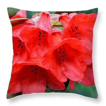 Red Trumpet Rhodies Throw Pillow