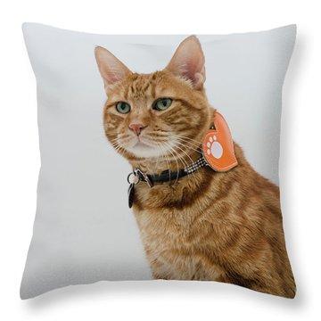 Red Tubby Cat Tabasco Pet Throw Pillow