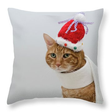 Red Tubby Cat Tabasco Christmas Hat Throw Pillow