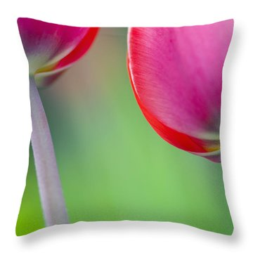 Red Tuliips Throw Pillow by Silke Magino