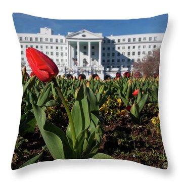 Red Tulip At The Greenbrier Throw Pillow
