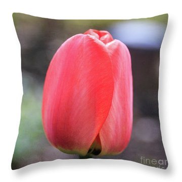 Throw Pillow featuring the photograph Red Tulip Square by Edward Fielding