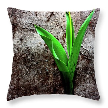 Red Tulip Throw Pillow by Gray  Artus