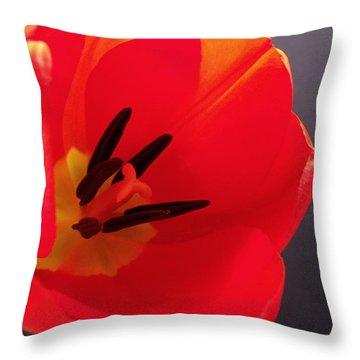 Red Tulip IIi Throw Pillow by Anna Villarreal Garbis
