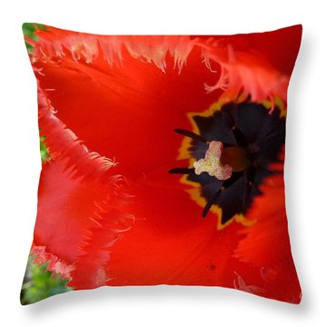 Throw Pillow featuring the photograph Red Tulip by Jean Bernard Roussilhe