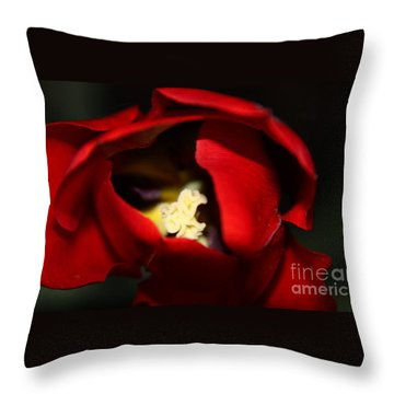 Throw Pillow featuring the photograph Red Tulip by Jolanta Anna Karolska
