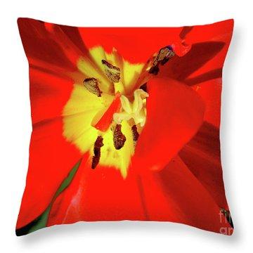 Red Tulip Throw Pillow by Nina Ficur Feenan