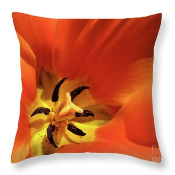 Red Tulip Throw Pillow by Susan Cole Kelly