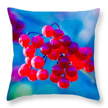 Throw Pillow featuring the photograph Red Viburnum Berries by Alexander Senin